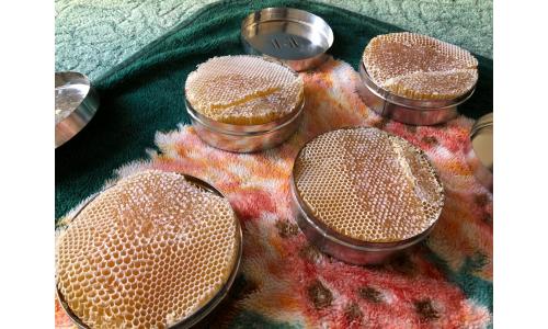 عسل بغيه وسدر